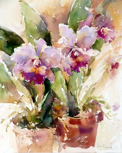 Painting of Orchid, Orchids